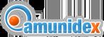 Amunidex - Diseño y Desarrollo de páginas web